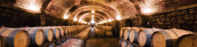 Wine varieties in Italy | Leonardobansko