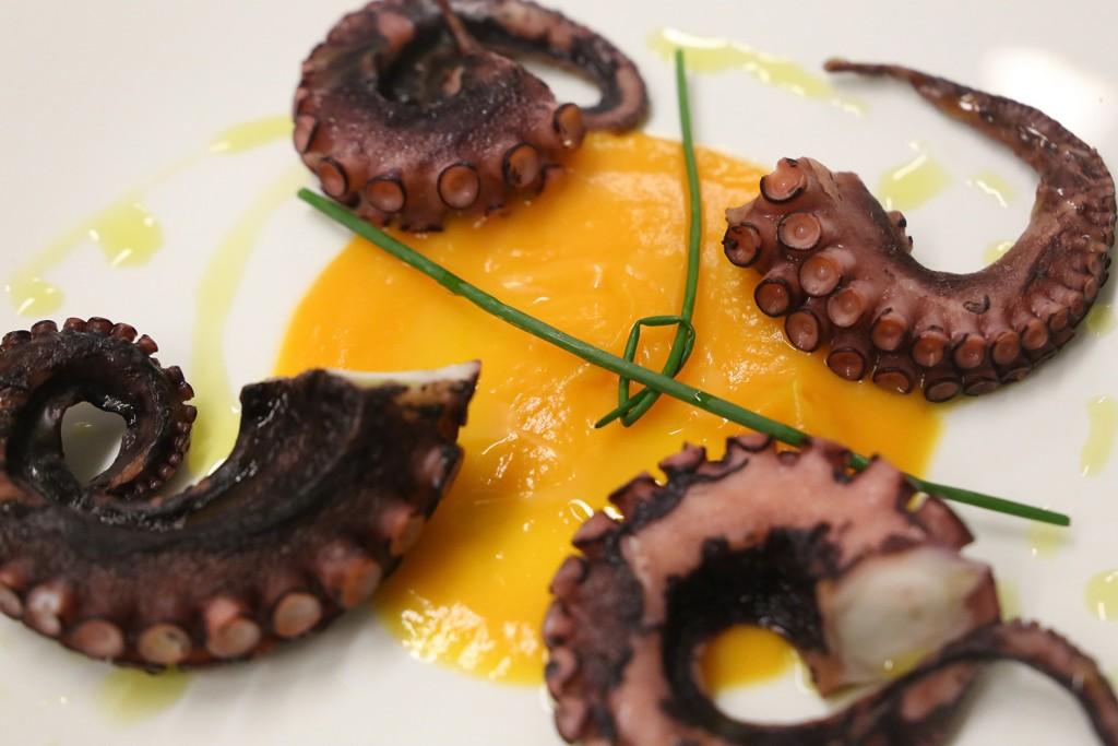 Octopus Luciana | Leonardo Bansko